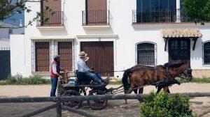 Matrimonio civil celebrante en Huelva