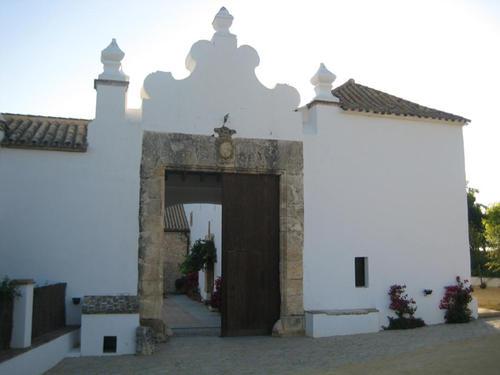 Maestros de ceremonias y bodas civiles en Fain Viejo en Arcos de la Frontera en Cadiz Bodas bilingues español e ingles