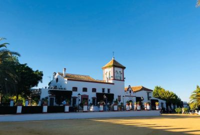 Ceremonier-civil-bröllop-at-Hacienda-de-Oran-en-Utrera-Sevilla-en-Espanol-Sueco-e-English